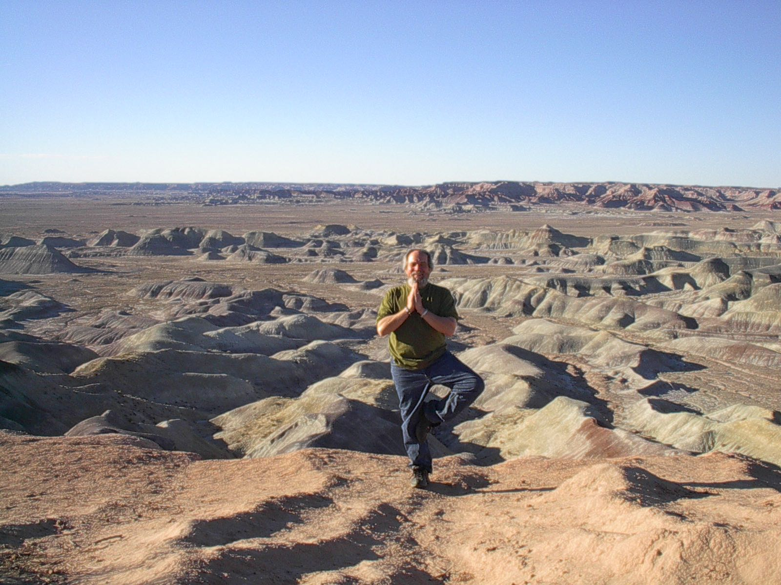Dennis At Little Painted Desert